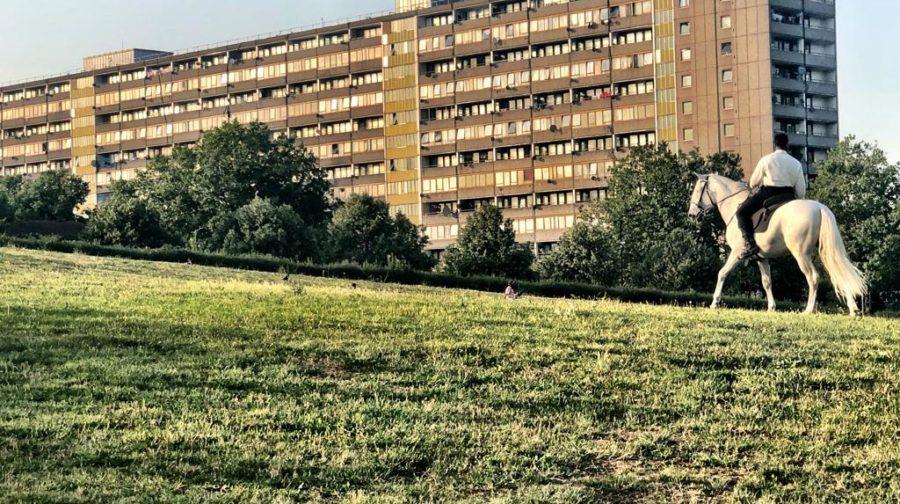 John-Boyega-rides-a-white-horse-in-Burgess-Park-on-Tuesday-900x504
